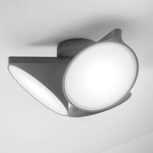Axo Light Axolight Orchid stropné LED svietidlo, tmavosivé