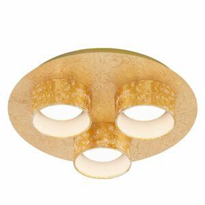 Briloner Stropný LED rondel Anna 3-plameňový v zlate