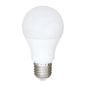 BIOleDEX LED žiarovka ARAXA E27 9W pre AC a DC, 5000K