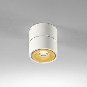 Egger Licht Egger Clippo stropné LED dim to warm biele/zlaté