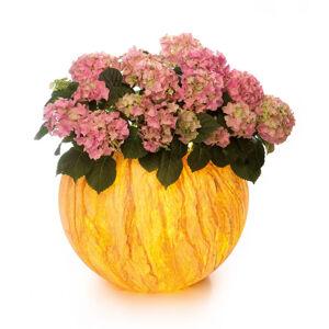 Epstein LED kvetináč Flora Sahara s diaľkovým ovládaním