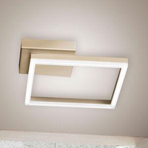 Fabas Luce Stropné LED svetlo Bard 27 x 27cm, matné zlato