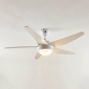 Lindby Lindby Ranja stropný ventilátor so žiarovkou R7s