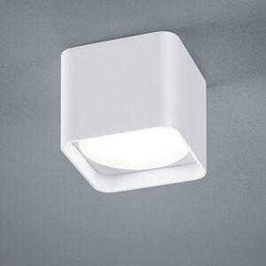 Helestra Helestra Dora stropné LED hranaté matná biela