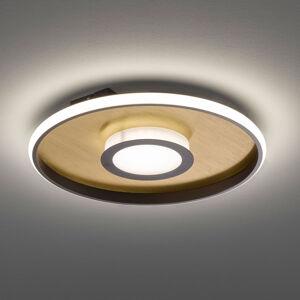 FISCHER & HONSEL LED stropné svietidlo Zoe, okrúhle, 45 cm