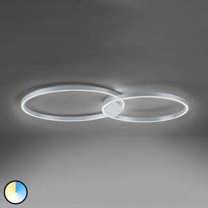 Q-SMART-HOME Paul Neuhaus Q-KATE LED stropná lampa, 96cm