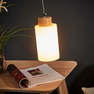 Spot-Light Závesná lampa Bosco olejovaný dub 1-pl.