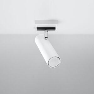 SOLLUX Stropné svietidlo Spoty, biele, jedno-plameňové