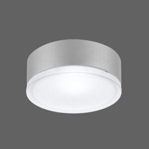 PERFORMANCE LIGHTING Účinné nástenné svietidlo Drop 22 LED sivé 4000K